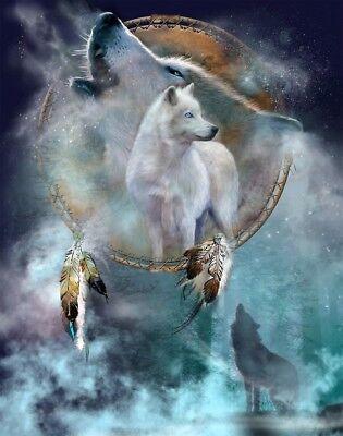 Native American Dream Catcher Wolve Dreams 8.5x11 Matte Art (Native American Dreams)