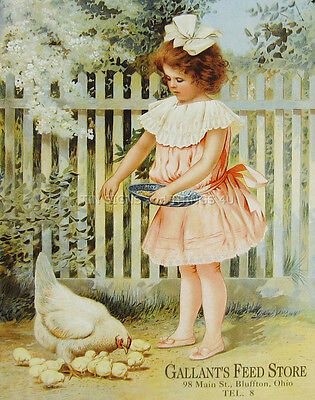 (Gallant's Feed Store ad TIN SIGN vintage girl & chicken metal wall art decor 969)
