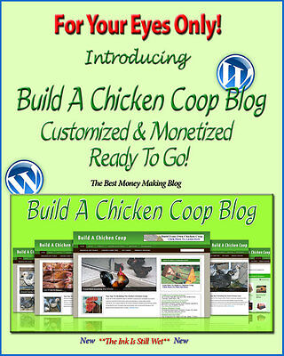 Build A Chicken Coop Blog Self Updating Website   Clickbank Amazon Adsense Pages