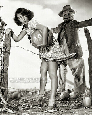 Halloween Pumpkins Photos (Vintage 1940s HALLOWEEN PIN-UP PHOTO * Pumpkin Thief * Scarecrow GLORIA)