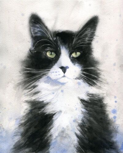 Giclee Print Tuxedo Cat Painting Watercolor Art 8x10 Black White Long hair