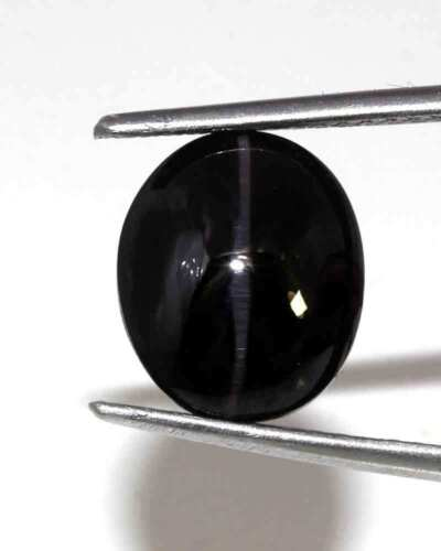 5.50 Cts Natural Spectolite Cats Eye Cabochon Loose Gemstone Stone
