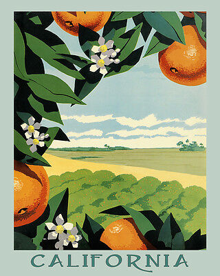 California Oranges Farm Juice American USA Fruit Vintage Poster Repo FREE S/H