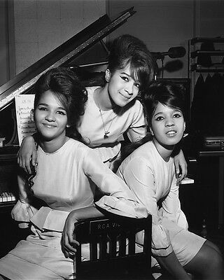 """The Ronettes 10"""" x 8"""" Photograph no 7"""