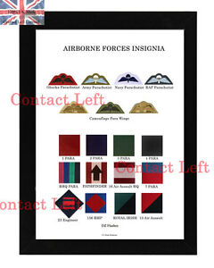 Large A3 British Airborne Forces Insignia Poster Para Wings / DZ Flashes (UK AB1