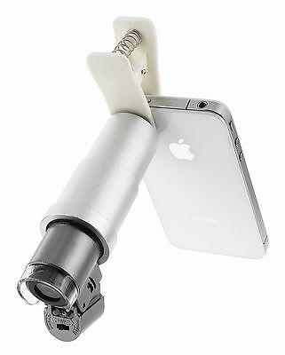 Den Dingen auf den Grund gehen – mit einem Lichtmikroskop