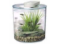 10L LED Fish Tank With Filter