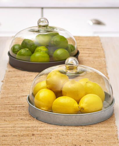 GALVANIZED Glass Domed Serving Plate Cookie Tray Pastry Cake Pie Display Case
