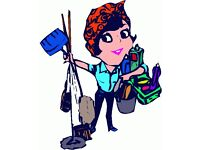 EXPERIENCED DOMESTIC CLEANER IS LOOKING FOR A JOB IN NORTH LONDON.