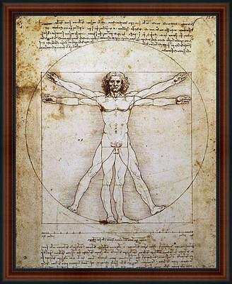 The Vitruvian Man by Leonardo da Vinci. Framed Poster Print. Walnut Frame
