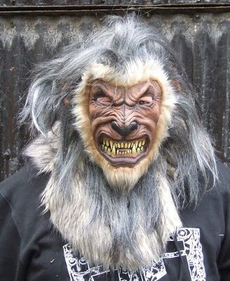 Adult Werewolf Overhead Latex Mask - Very Realistic - Halloween Costume Prop