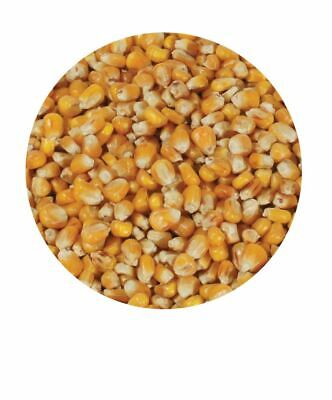 Copdock Mill Whole Maize 20Kg Poultry Food Pigeon Waterfowl Duck Goose Feed