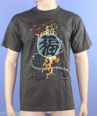 Bedruckte T-Shirt Drago Japanisch Schriftzeichen Grau Wmb01