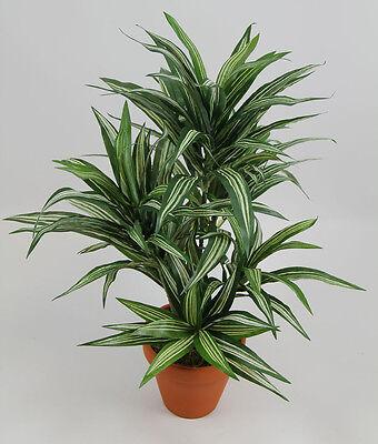 Dracena 42cm grün-gelb im Topf DA künstliche Pflanzen Kunstpflanzen Kunstpalmen