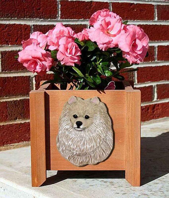 Pomeranian Planter Flower Pot Cream