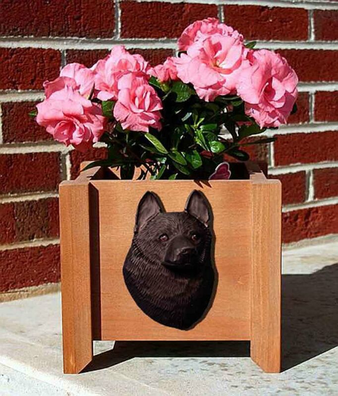 Schipperke Planter Flower Pot