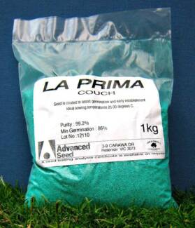 Advanced Seed La Prima Couch Lawn Seed