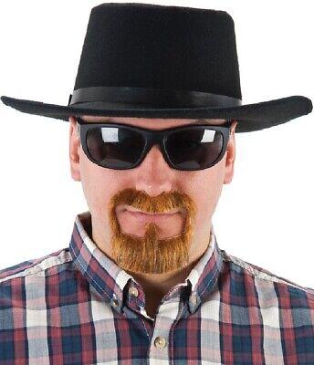 Herren Ingwer Falsch Selbstklebend Spitzbart Bart Schnurrbart Maskenkostüm