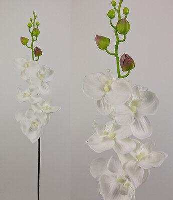 Reine Orchidee (Orchideenzweig 90cm rein-weiß AD Kunstblumen Seidenblumen künstliche Orchidee)