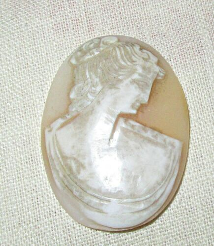 Antique Cameo Carved From Seashell 1 5/9th x 1 1/8th Inches