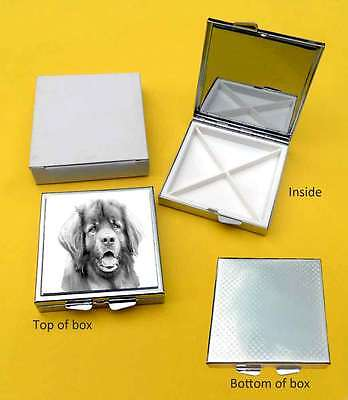 Leonberger Dog Polished Metal Square Pill Box with 4 compartments Gift