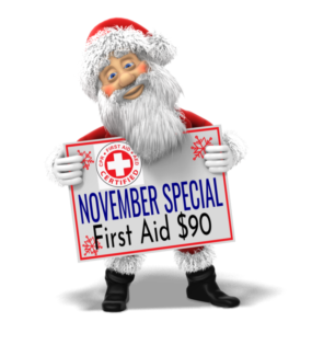 First Aid Certification 003 Only $90