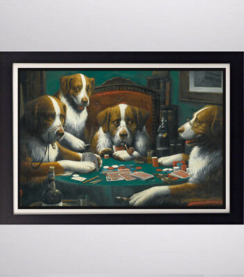 (Cassius Coolidge Dog's Playing Poker Glossy Poster 11in x 17in 24in x 36in)