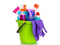 PREMIER CLEANER. Domestic, end of tenancy and commercial cleaning covering the Scottish Borders.