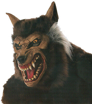 Halloween Costume MEAN WEREWOLF WITH HAIR DELUXE MASK Prop Haunted House NEW](Deluxe Werewolf Halloween Costume)