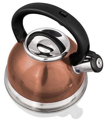 Stainless Steel Whistling Tea Kettle - 2.8 Liter Tea Maker