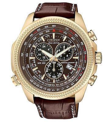 New Citizen Eco-Drive Perpetual Calendar Leather Strap Men's Watch BL5403-03X
