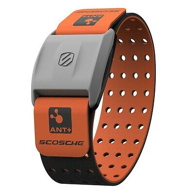 Scosche Rhythm+ Heart Rate Monitor Armband - Orange - Optica