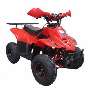 110cc Beast Big Wheel 7inch ATV QUAD not 50cc 70cc 90cc RR $1100
