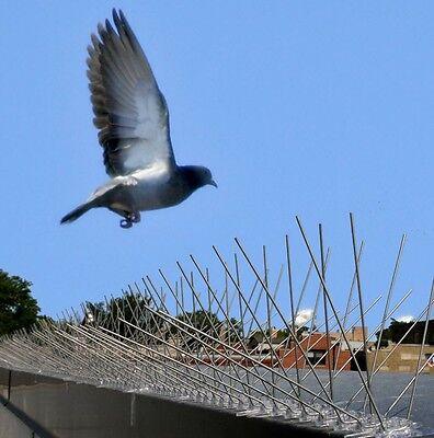 Bird-X Bird Spikes 100 Feet Best Seller Pest Bird Control Prevent Nest Building