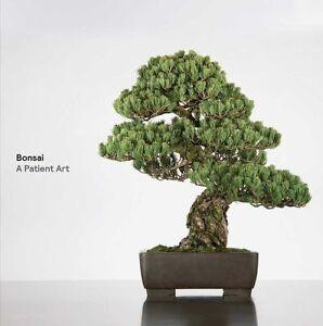 Bonsai: A Patient Art by Susumu Nakamura, Terry Ann R. Neff, Ivan Watters...