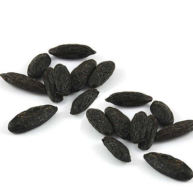3 Tonka beans - Witchcraft - Black Magic - Santería - Hoodoo - Voodoo