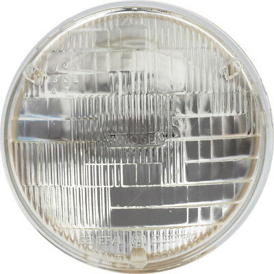Headlight Bulb-Convertible Philips H5006C1
