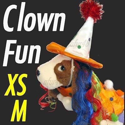 X-Small Fun-lovin CLOWN Dog Costume w/ Wig &Hat ~ Pet friendly time ~Zack & Zoey