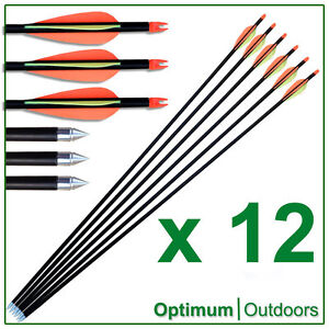 12 x Fibreglass Steel Tip Arrows Archery UK Seller New