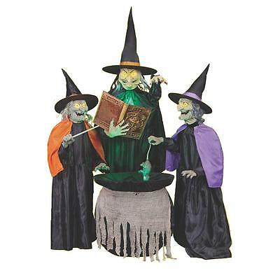 Life Size Animated Spell Casting Witches Halloween Prop Haunted House Decor
