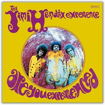 Sony The Jimi Hendrix Experience - Are You Experienced Vinyl LP