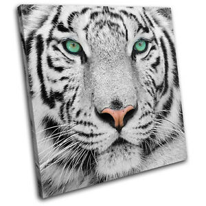 Siberian-Tiger-Eye-Animals-SINGLE-CANVAS-WALL-ART-Picture-Print-VA