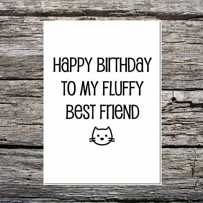 funny cute birthday card for the cat - happy birthday to my fluffy best (Cute Birthday Cards For Best Friend)