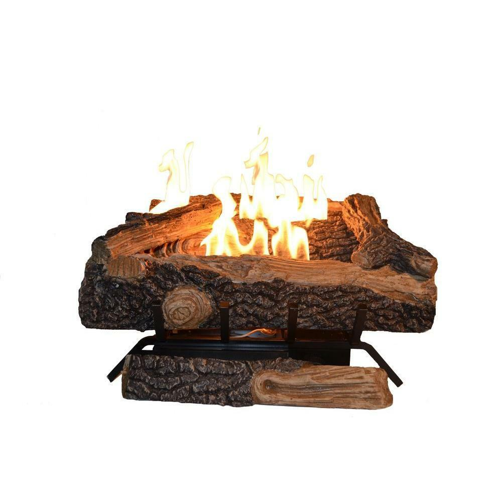 Emberglow Oakwood 24 In. Vent-Free Propane Gas Fireplace Log
