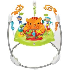 Fisher price Jumperoo £50