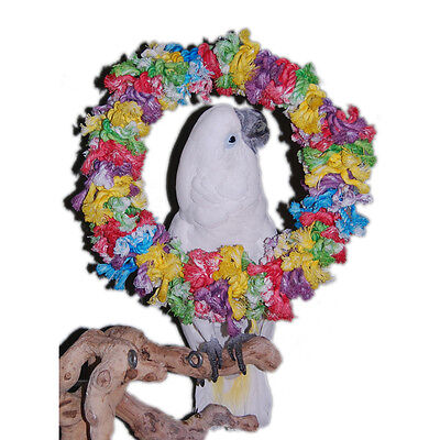 Parrot Swing Perch Pet Bird Toy Swing Preen   Snuggle Ring Giant
