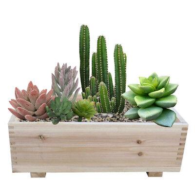 Timber Valley Dual Purpose Cedar Garden Planter Box & Storage Box (Set of 2)