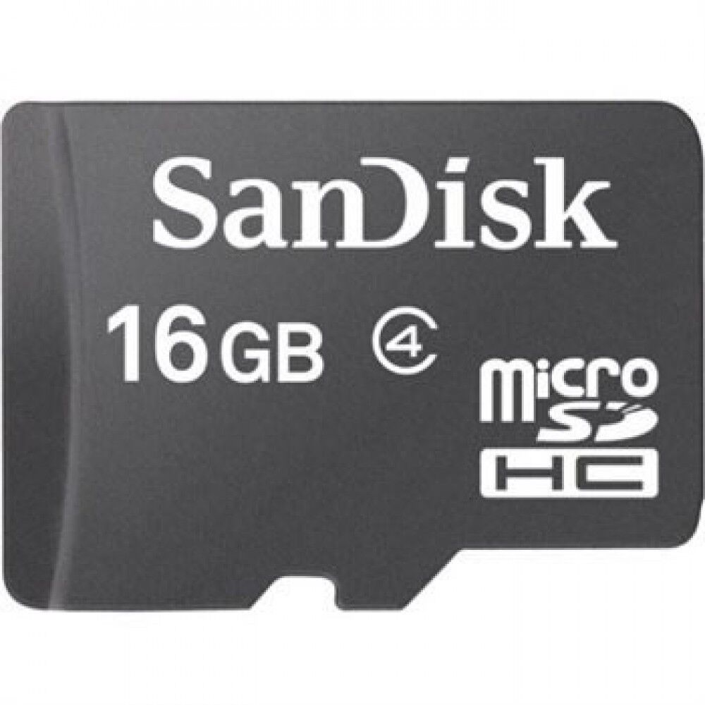 Sandisk Blank 16GB Sdhc Memory Card For Garmin Nuvi 40,40LM,50,50LM GPS Navigator