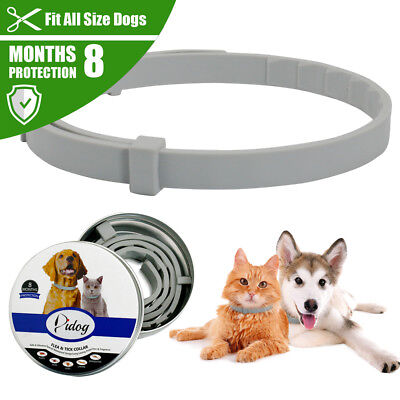 Didog Natural Dog Cat Flea and Tick Collar 8 Month Protection Insect Killer