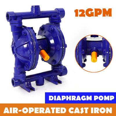 Air-operated Double Diaphragm Pump 12gpm 12 Air Inlet Membrane Pump Usa
